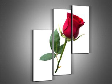 Среди цветочных картин для кухни наиболее популярны изображения роз